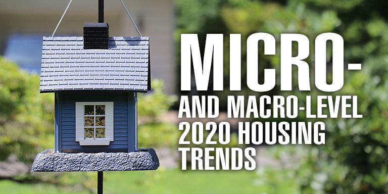 Micro-and Macro-Level 2020 Housing Trends